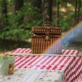 公園でピクニック!忘れちゃいけない持ち物リスト。2019年最新版はこれ!